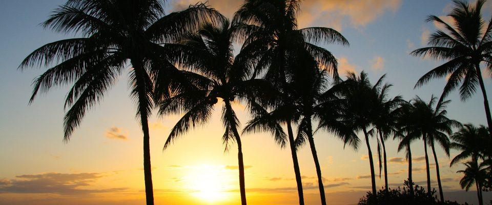 Honolulu beach sunset